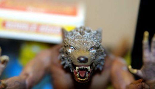 人狼初心者&未経験者必見。芸人と学ぶ人狼ルール&テクニック講座