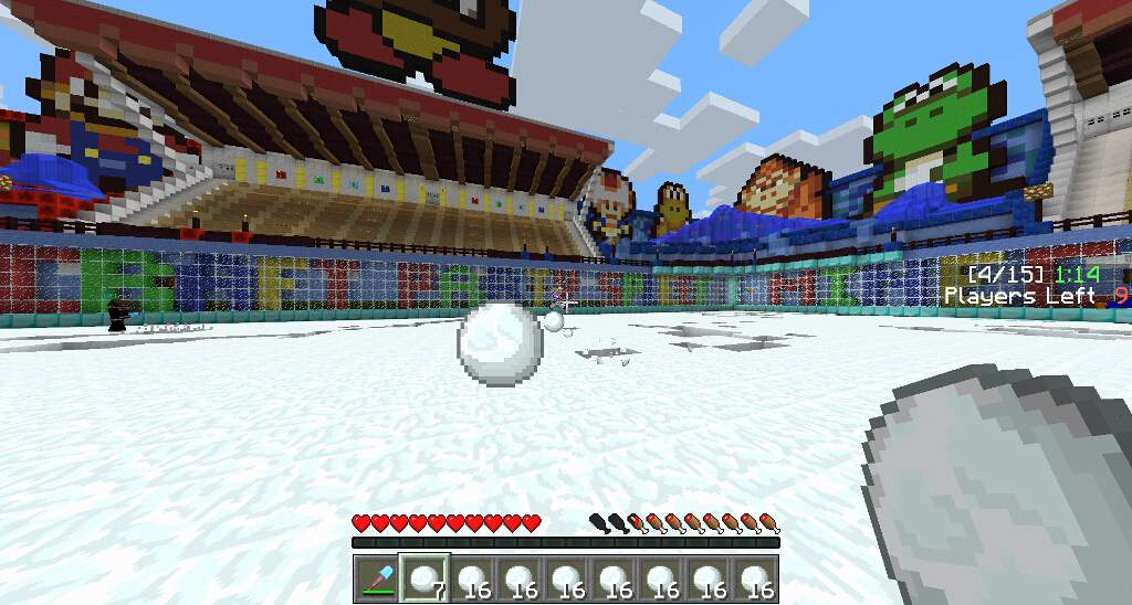 minecraft-party-multi-server-mario-06