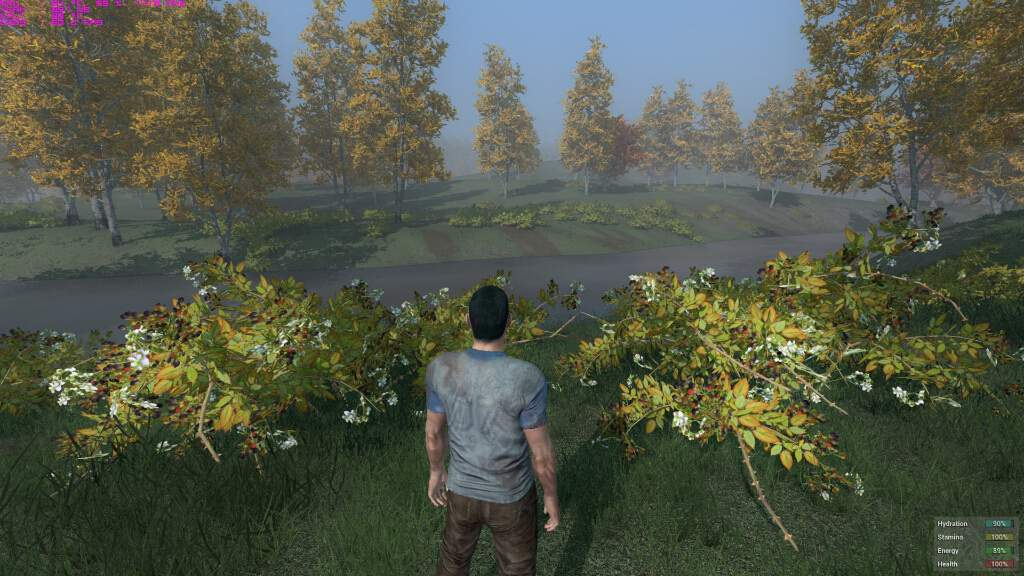 h1z1-pc-spec-gpu-cpu-bto-5