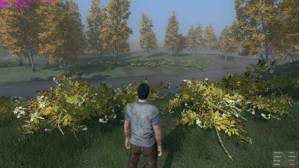 h1z1-pc-spec-gpu-cpu-bto-6