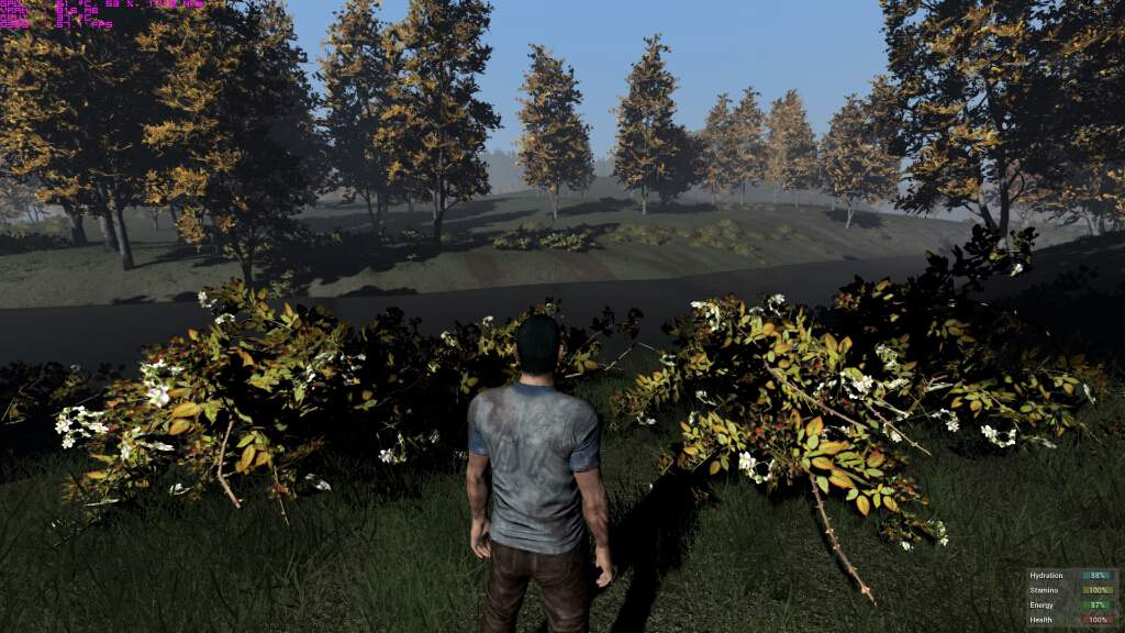 h1z1-pc-spec-gpu-cpu-bto-7