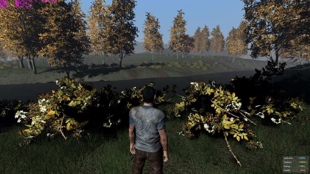 h1z1-pc-spec-gpu-cpu-bto-8