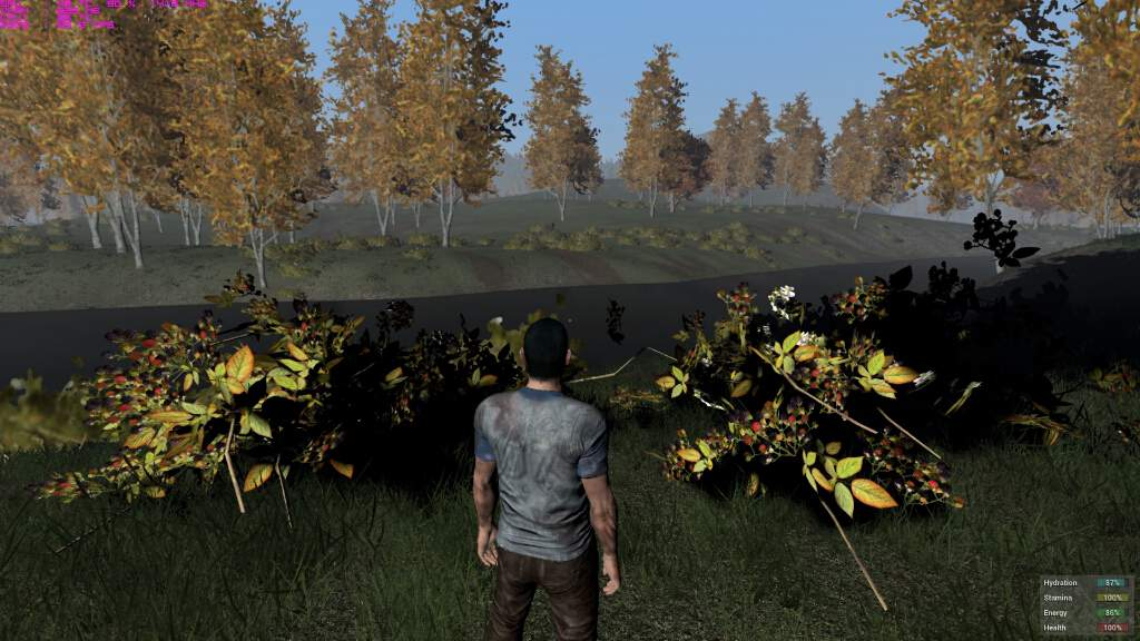 h1z1-pc-spec-gpu-cpu-bto-9
