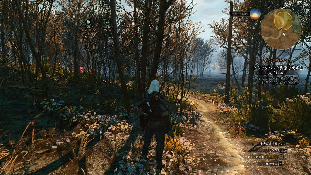witcher3-wildhunt-review-kansou-4