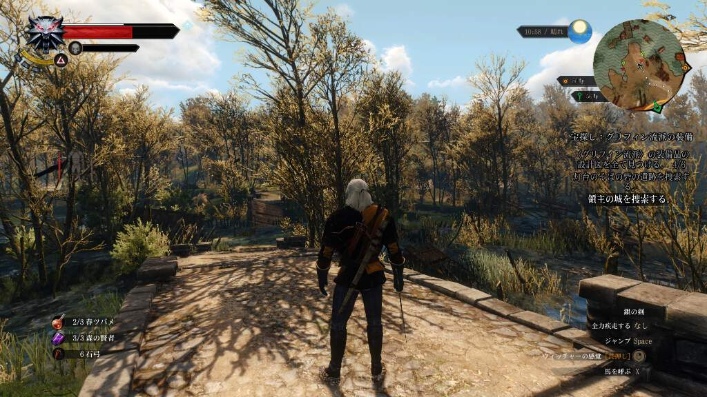 witcher3-wildhunt-review-kansou-7