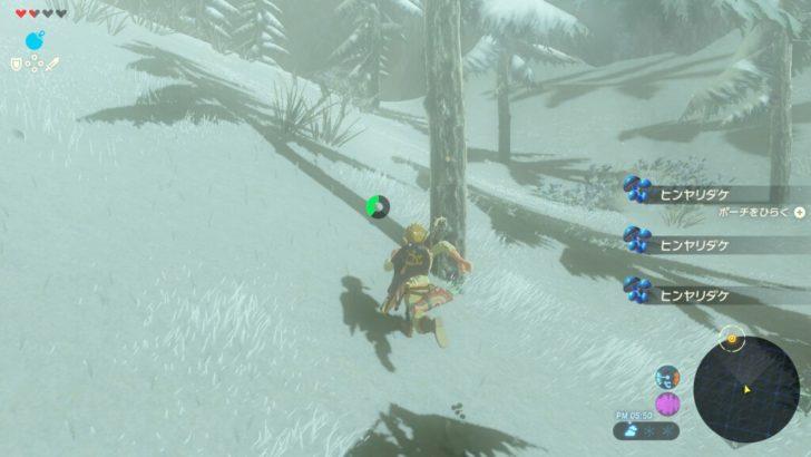 防寒具を持たないまま雪山に突入。マジで死にそうだった。