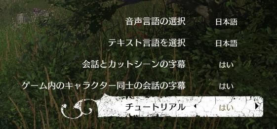音声言語とテキスト言語は最初から日本語になっていました